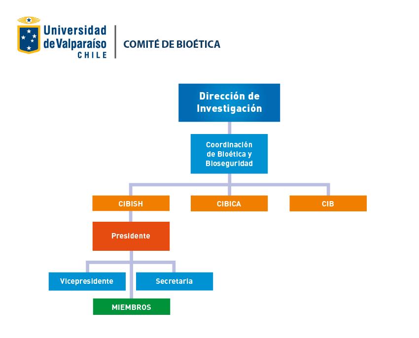 organigrama_bioetica
